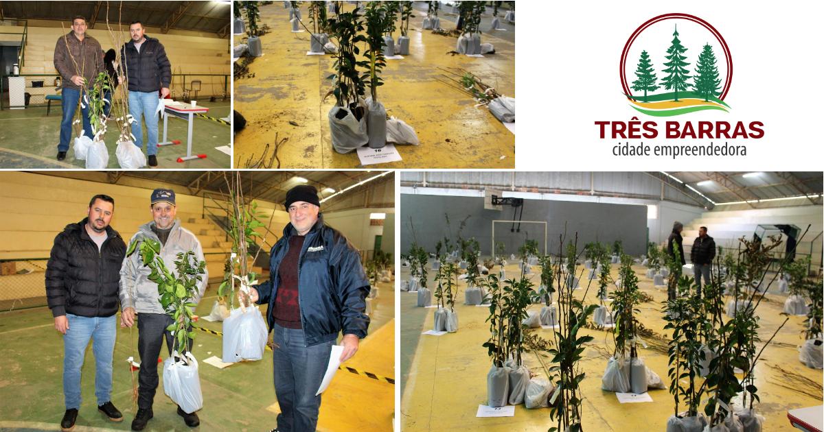 Programa Pomares Caseiros entrega mais de 1,3 mil mudas frutíferas em Três Barras